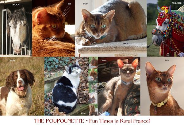 The Poupounette