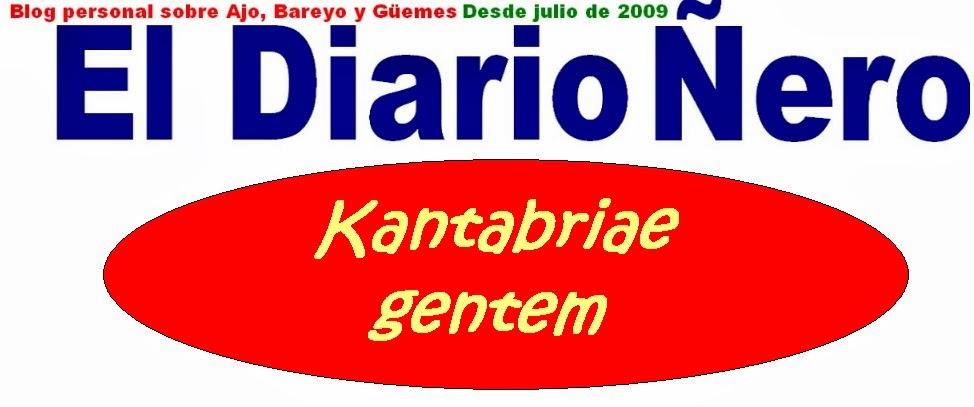 El Diario Ñero