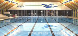 Les piscines du hainaut piscines mouscron tournai comines for Piscine dauphin mouscron