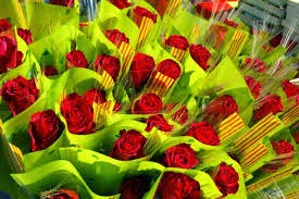 exportacion de rosas