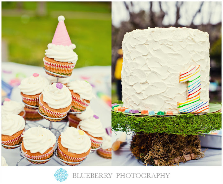 san francisco bay area baby photography rainbow birthday at park