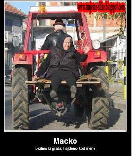 Macko, bežimo iz grada, idemo kod mene, SMEŠNE SLIKE