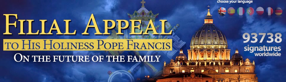 Filial Appeal To Pope Francis