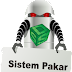 Defenisi System Pakar