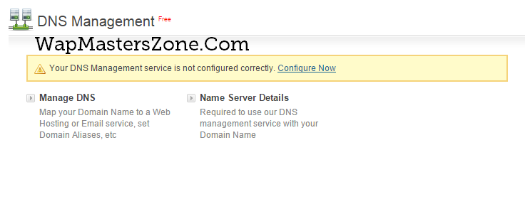 wapka site dns manage custom bigrock domain