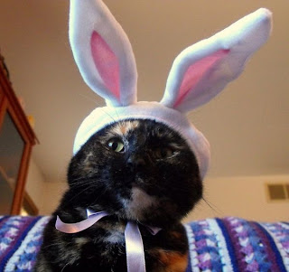 Recent Photos The Commons Getty Collection Galleries World Map App Easter With Real Bunny