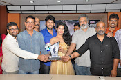 Hora Hori Movie Audio success meet-thumbnail-5