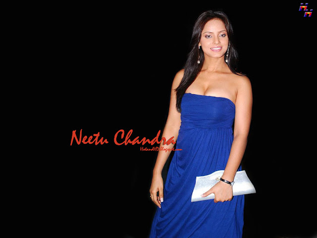hot and hd neetu chandra nude pictures download