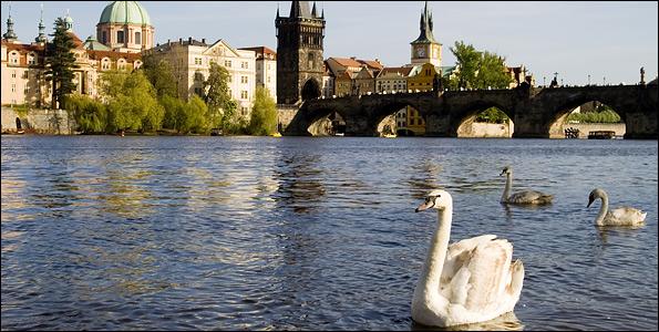 Γέφυρες στην ευρώπη: ιστορίες της