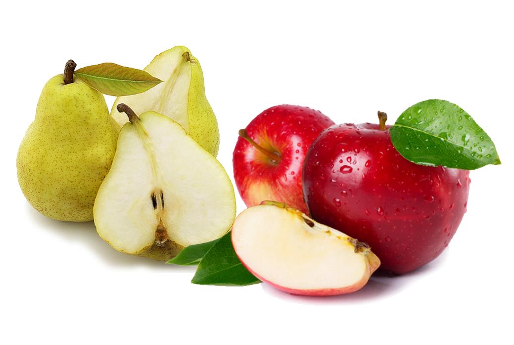 Image result for buah pir dan apel