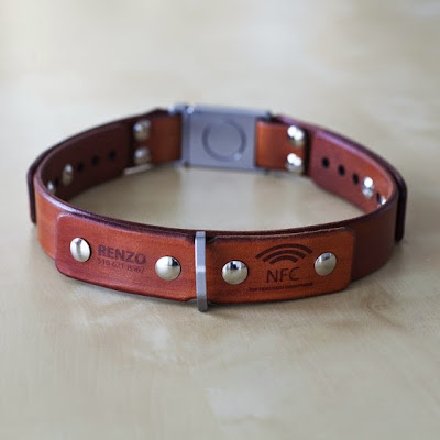 Must Have Gadgets For Dog Owners (15) 12