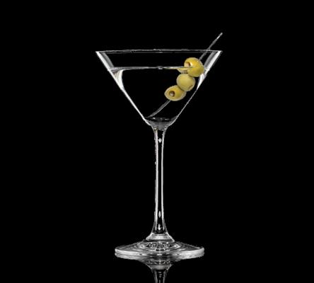 Resultado de imagem para foto de drinks de gim
