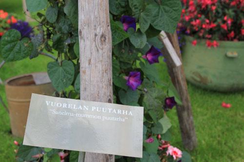 Sanelma mummon puutarha
