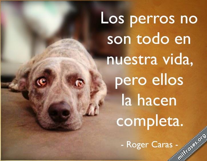 frases de Roger Caras sobre perros