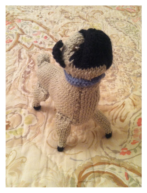 Knitted Pug Pattern : anna knits, etc.: anna knits - knit pug update 4