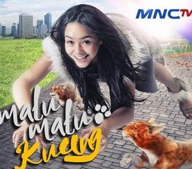 Malu-malu Kucing MNCTV