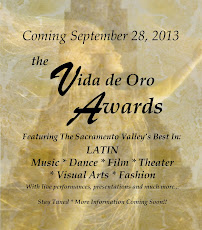 Vida de Oro Awards 2013
