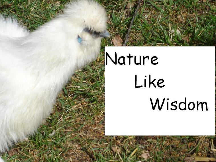Nature Like Wisdom