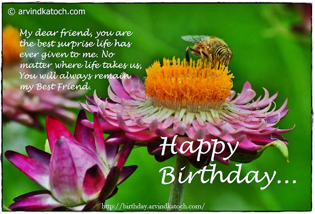 Birthday Card, Flower Card, Bee, Best Friend, Life, Surprise,