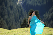 Hansika Motwani latest saree photos stills Gallery-thumbnail-14