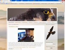 Nuestro blog, ACF
