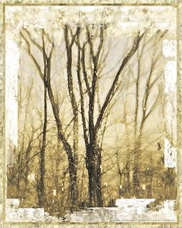 Tones of Yesterday Copyright 2015 Christopher V. DeRobertis. All rights reserved. insilentpassage.com