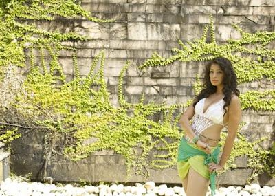 CCL Calendar 2012 Hot Pics