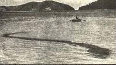 Misteri Monster Laut Pulau Hook