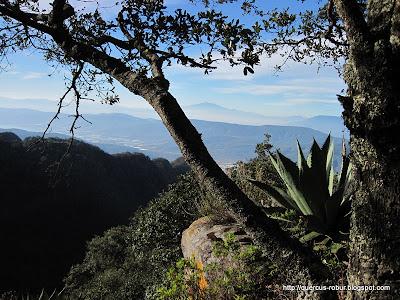 Vista desde Cerro Viejo