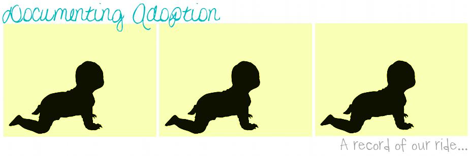 Documenting Adoption