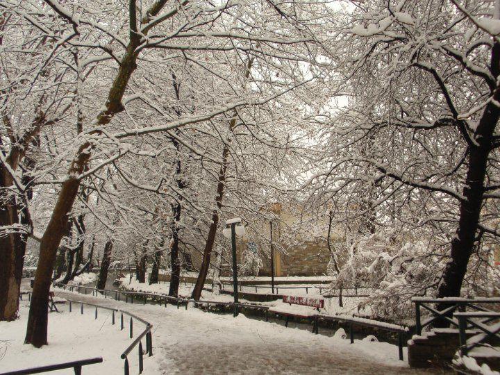 Το πάρκο στο Κιουπρί χιονισμένο