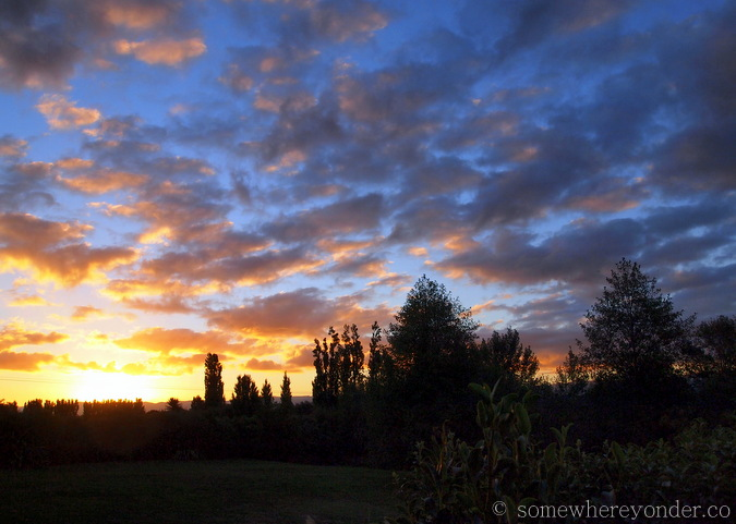 Martinborough sunset, wine district, New Zealand