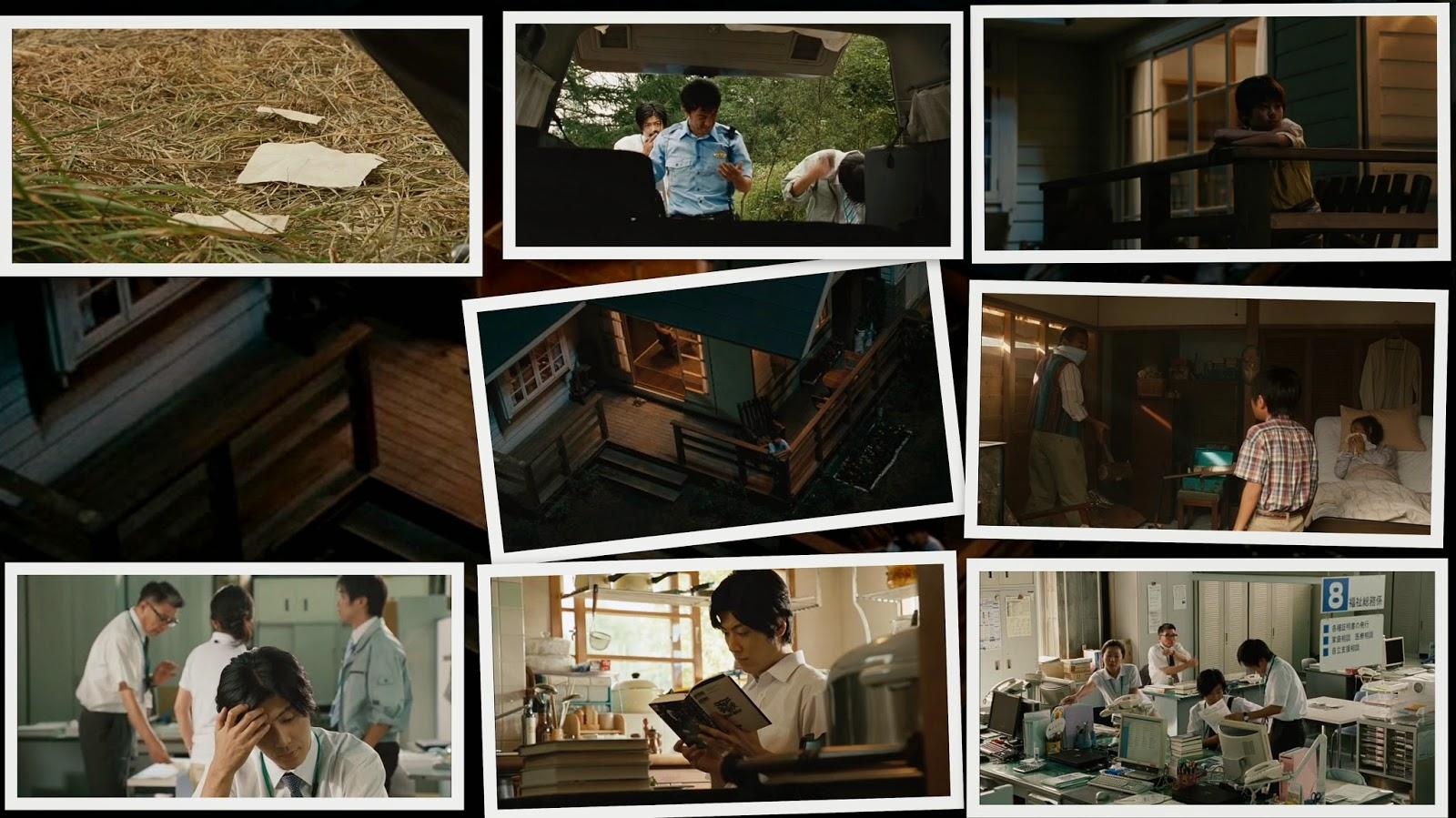 Star Watching Dog (2011)