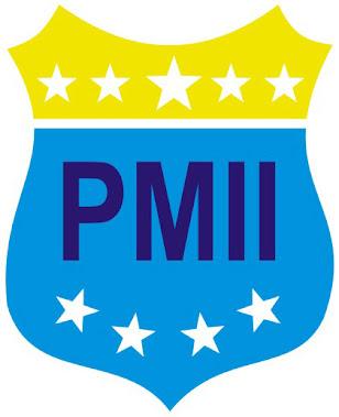 logo pmii