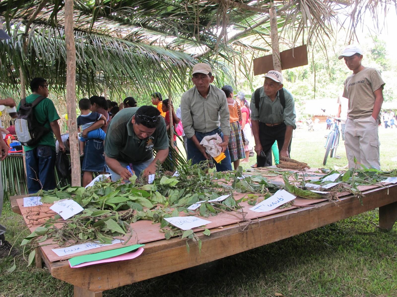 essay topics agriculture essay topics