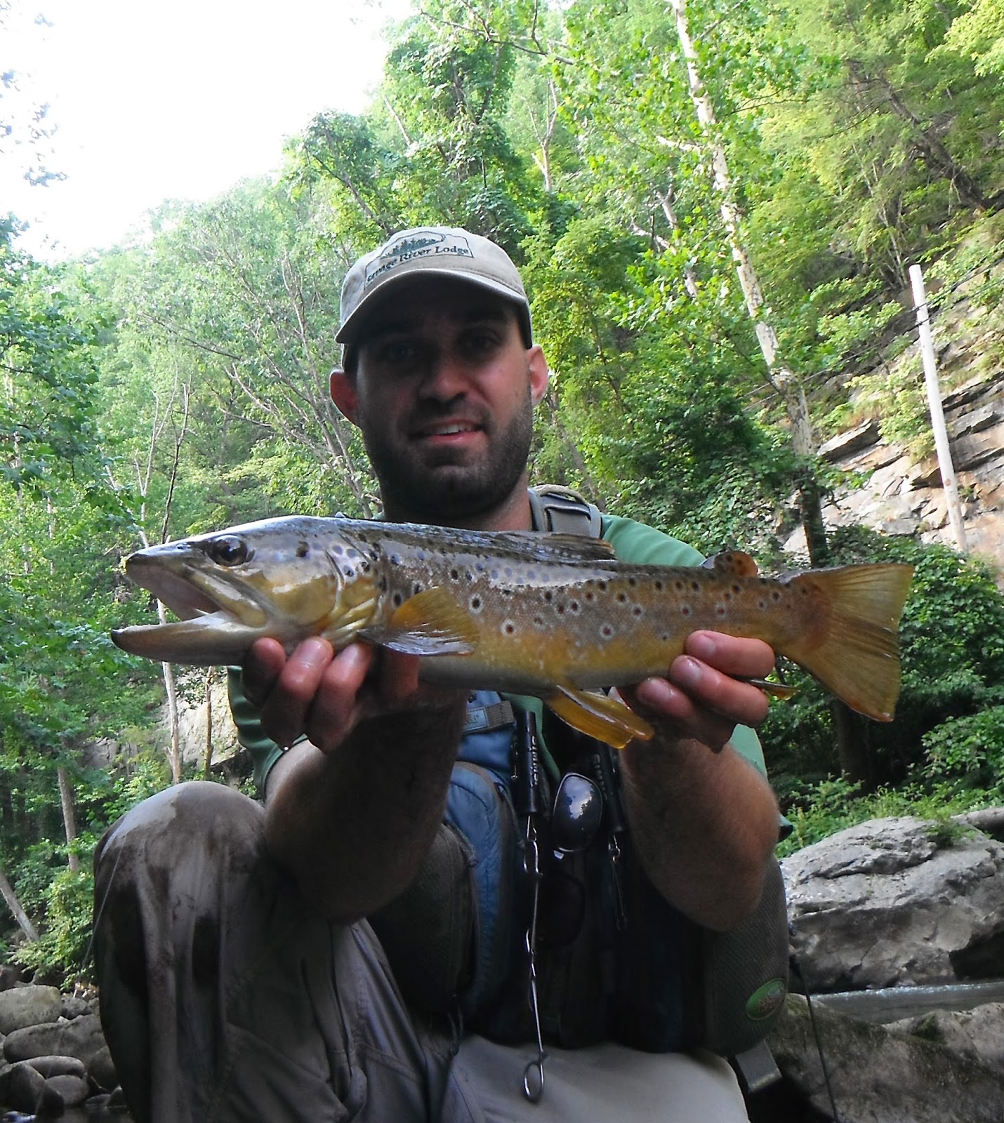 Western maryland fly fishing get out there and fish for Md trout fishing