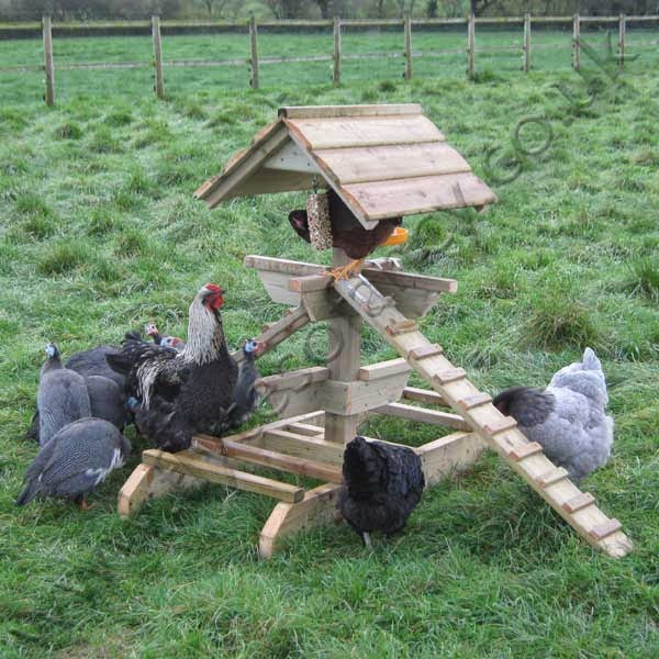 http://www.flytesofancy.co.uk/chickenhouses/Chicken_Perch_Activity_Centres.html