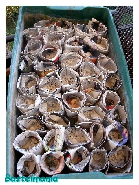 Pots of Seeds