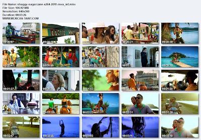 Shaggy-Sugarcane-x264-2011-MVO_iNT