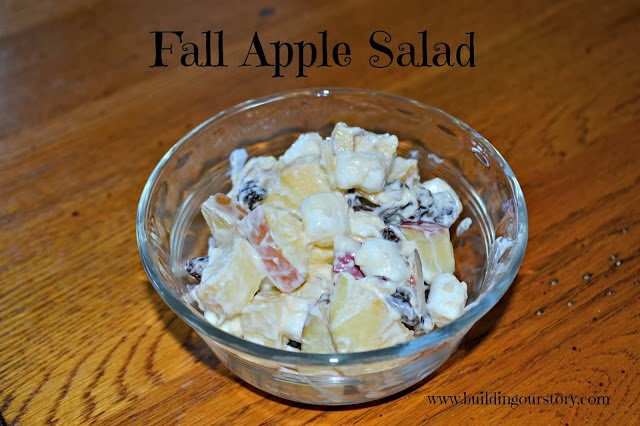 Fall Apple Salad Recipe
