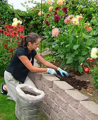 Home-Gardening-Tips