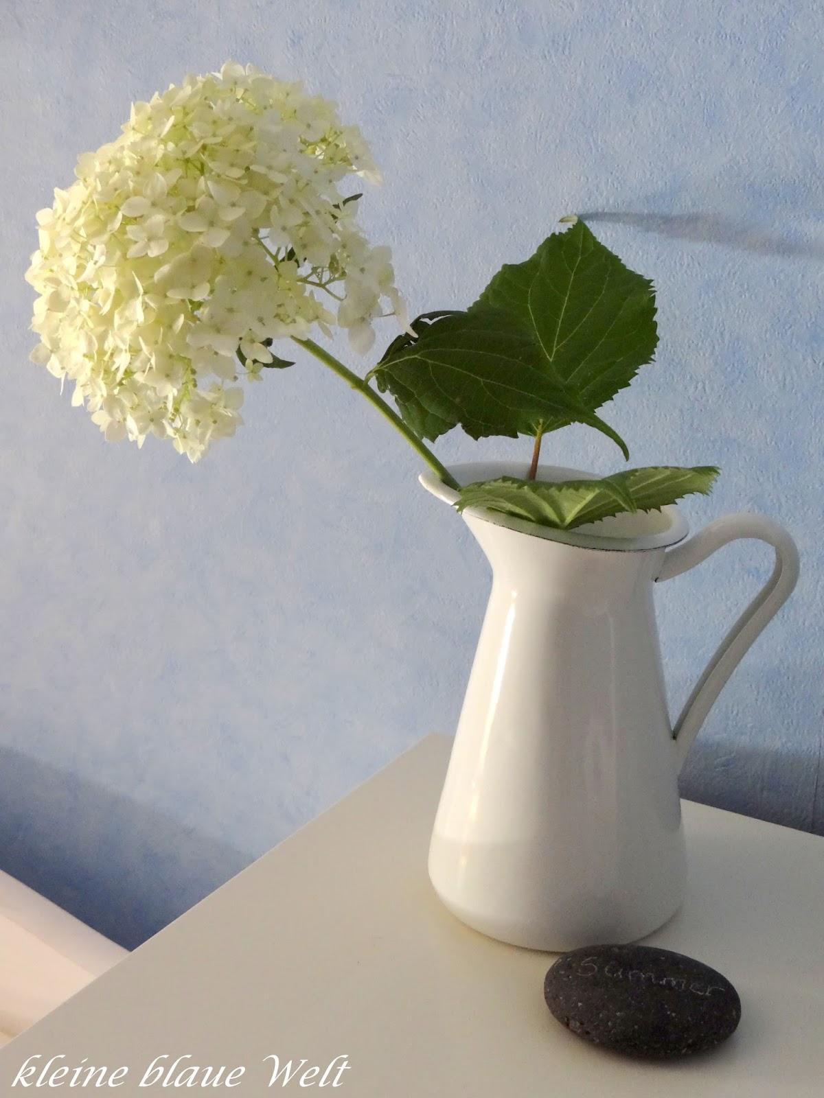 kleine blaue welt friday flowerday 32. Black Bedroom Furniture Sets. Home Design Ideas