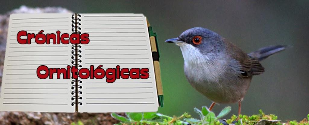 Crónicas Ornitológicas