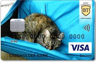 Card bancar cu pisica si valiza bleu