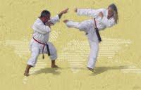 Kokusai Seito Karate Kenkyukai