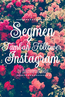 Segmen Tambah Follower Instagram