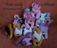 Kocie candy u Alinki
