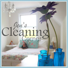 Visit My Cleaning Blog