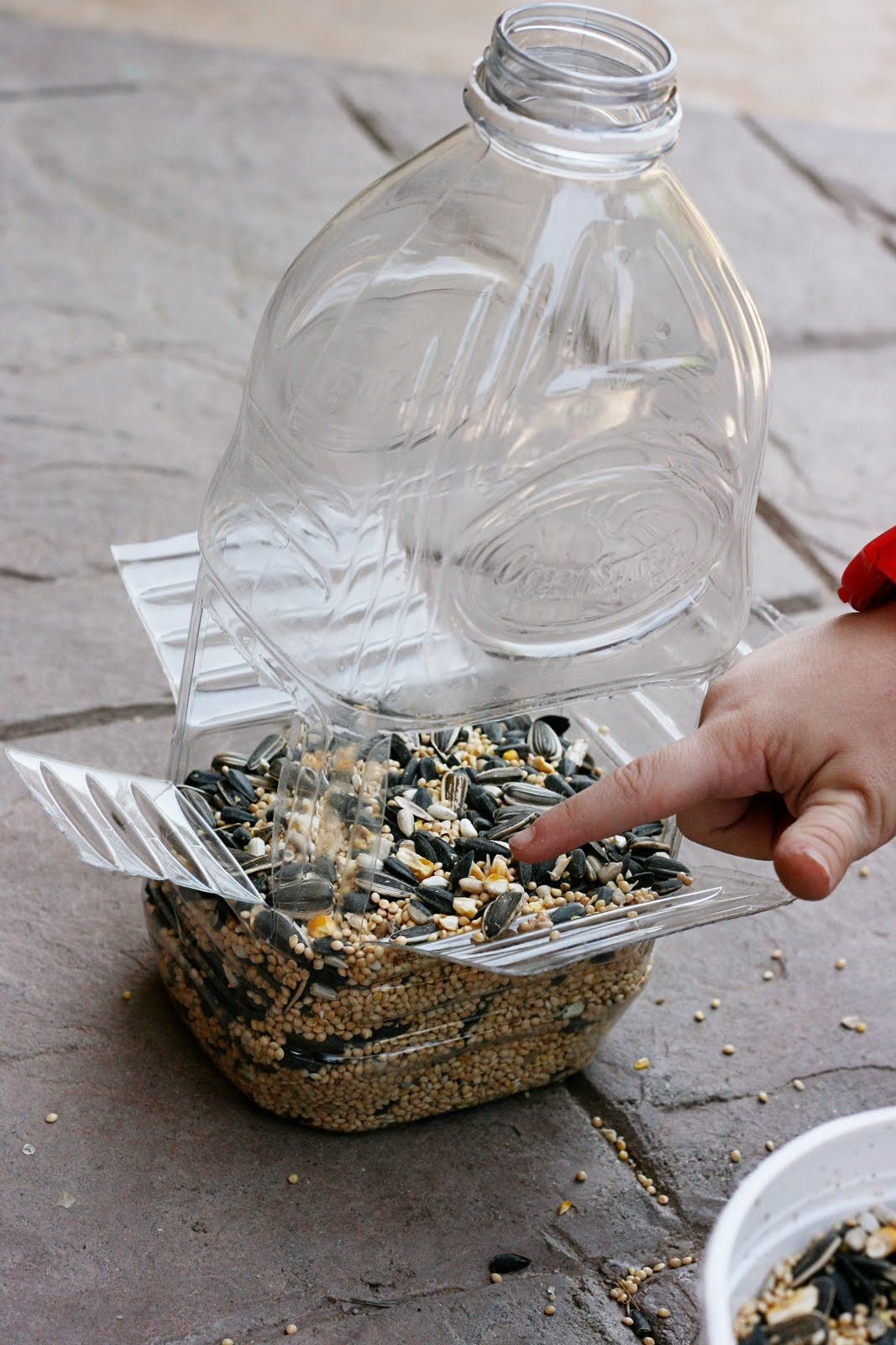 Sparklinbecks diy bird feeder for Diy plastic bottle
