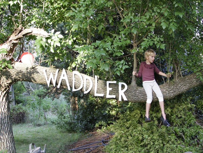 Waddler autumn-winter 2014/15 collection